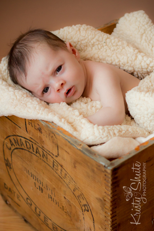 PictureKristy Shute Kitchener Newborn Photography Crate